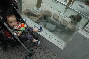 動物園2.jpg